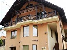 Villa Ocfalva (Oțeni), Man Villa
