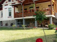 Apartment Piscu Mare, Laura Guesthouse