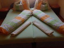 Bed & breakfast Tiszaug, Borostyán BnB