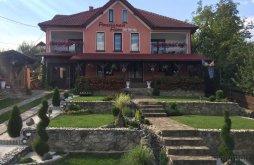 Apartment near Săvârșin Castle, Flori B&B
