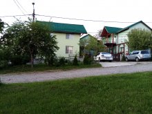 Accommodation Cluj-Napoca, Verde Guesthouse