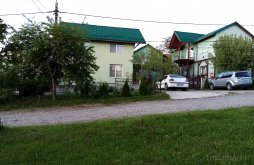 Apartman Felsőbánya (Baia Sprie), Verde Panzió