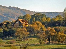 Pachet de Ziua Îndrăgostiților Piscu Pietrei, Casa Vale ~ Vila Zollo