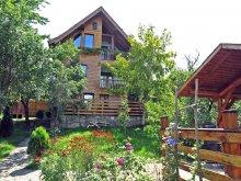 Szállás Păltiniș sípálya, Casa Vale ~ Zollo II Nyaraló