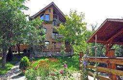 Szállás Szebenkákova (Fântânele), Casa Vale ~ Zollo II Nyaraló