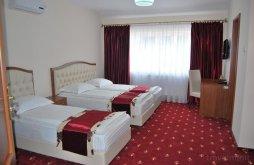 Hostel Nemeșești, Hostel Păltiniș