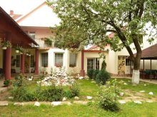 Accommodation Satu Mare county, Denisa & Rareș Guesthouse