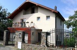 Casă de oaspeți Târgu Mureș, Casa de oaspeți Pousada Panoramica