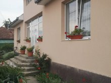 Vacation home Nord Vest Thermal Bath Park Satu Mare, Mihaela Vacation Home