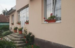 Vacation home Porumbești, Mihaela Vacation Home