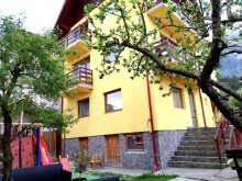 Bed & breakfast Sinaia Swimming Pool, D&D Guesthouse