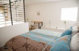 Apartman Traian Vuia Temesvári Nemzetközi Repülőtér közelében, Friends Residence Apartman