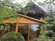 Accommodation Törcsvári szoros, Milenium Residence Guesthouse