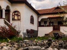 Accommodation Törcsvári szoros, Surâsul Muntelui Guesthouse