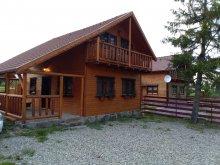 Accommodation Remetea, Szakacs Guesthouse