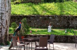 Pensiune Ciclova Montană, Pensiunea Casa cu Platani