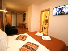 Accommodation Izvin, Confort Rustic Apartment