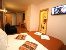 Apartment Sânmihaiu German Thermal Bath, Confort Rustic Apartment