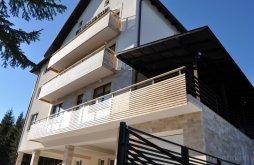 Accommodation Muntele Băișorii, Transylvania Villa&SPA