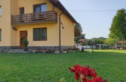 Vendégház Szászcsór (Săsciori), Maya Vendégház
