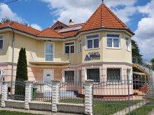 Vilă Sajóbábony, Prima Villa 3