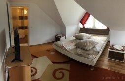 Apartament Dorna-Arini, Pensiunea Doru' Muntelui