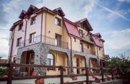 Accommodation Săliște, Heaven Guesthouse