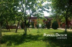 Accommodation Costești, Popasul Dacilor B&B