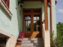 Guesthouse Ocna Dejului, Tünde Guesthouse