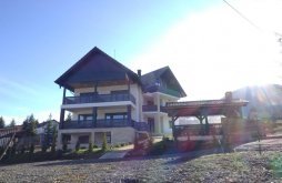 Vilă județul Bistrița-Năsăud, Vila Aqualina