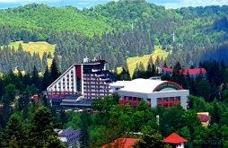 Accommodation Transylvania, Hotel Piatra Mare