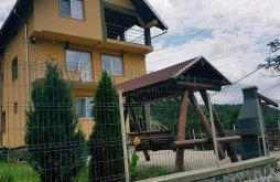 Accommodation Oeștii Pământeni, Valea Oiască Guesthouse