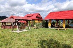 Guesthouse Dracula's Land Garlic Festival Tiha Bârgăului, Casa Nicusor Guesthouse