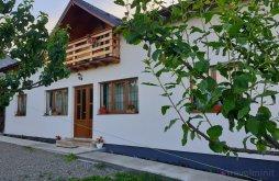 Accommodation Dragomirești, Ilea Guesthouse