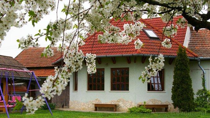 Apartamente Gábor Abádszalók