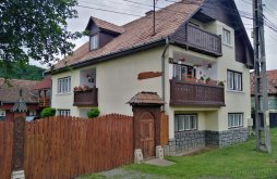 Guesthouse Mureş county, Janka Guesthouse