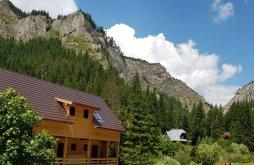 Cazare Munții Hășmaș, Casa Bicăjeanului