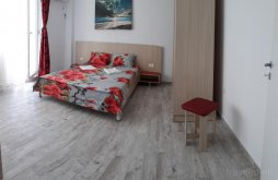Accommodation Romania, Stefan Alexandru Apartment