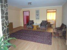 Accommodation Bisericani, Emese Guesthouse