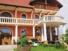 Vendégház Apanagyfalu (Nușeni), Erika Vendégház
