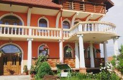 Vendégház Avasfelsőfalu (Negrești-Oaș), Erika Vendégház