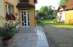 Accommodation Luna de Sus, Gyöngyvirág Guesthouse