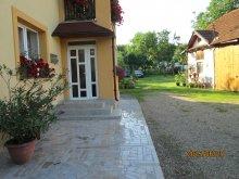 Accommodation Rădaia, Gyöngyvirág Guesthouse