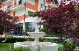 Accommodation Amărăștii de Jos, Plaza Lake Resort