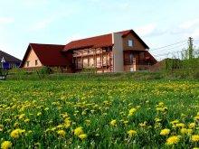 Accommodation Barajul Zetea, Balla B&B