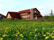 Accommodation Odorheiu Secuiesc, Balla B&B