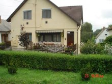 Accommodation Badacsonytomaj, Matene Holiday Villa