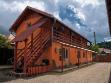 Accommodation Trei Sate, Irisz Guesthouse