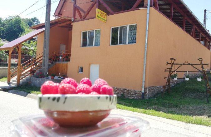 Pensiunea Fructele Padurii Baia de Arieș