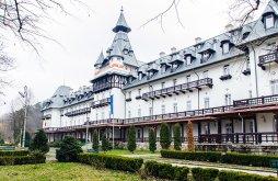 Hotel Stoenești (Berislăvești), Central Hotel